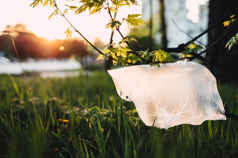 Fin de las bolsas plásticas
