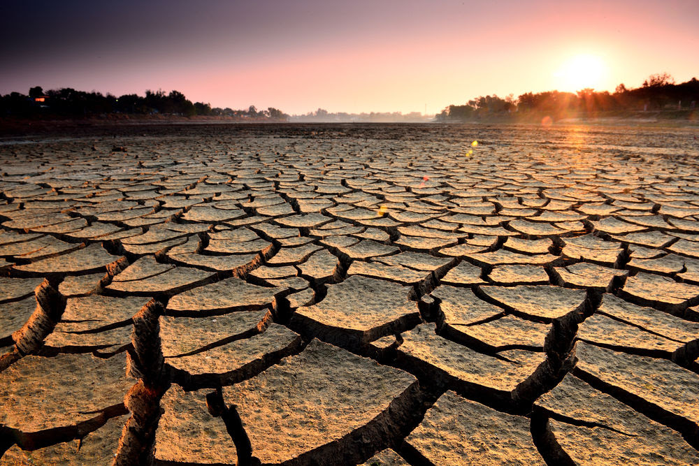 Qué es el estrés hídrico